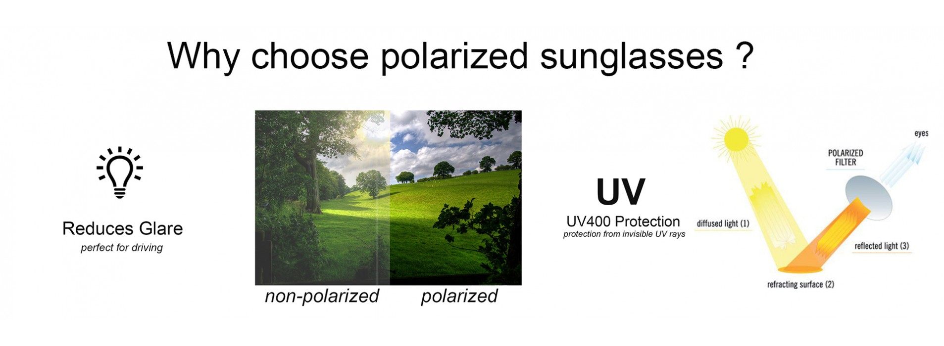 why polarised.jpg
